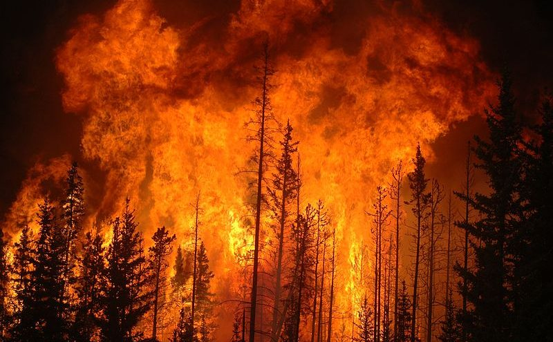What's Behind Our World on Fire?